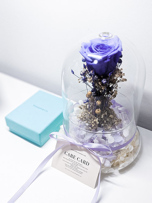 Amethyst Preserved Rose in Glass Dome
