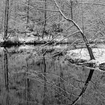 Landscape-11.jpg