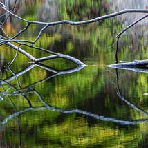 Landscape-10.jpg