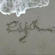 E.Y.A. - Envidia