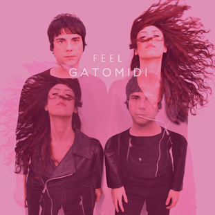 Gatomidi - Feel