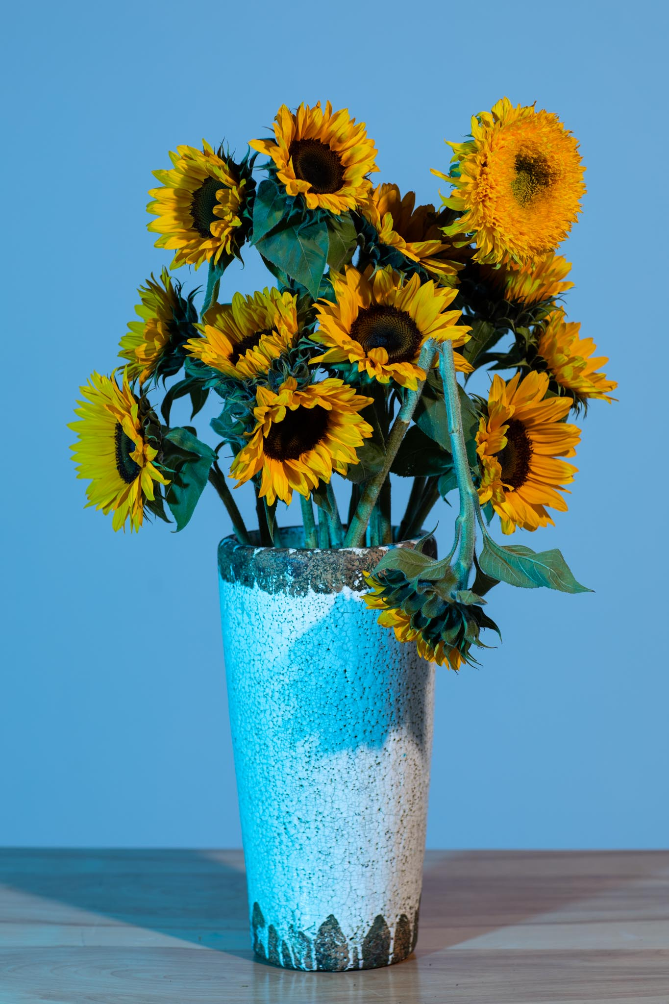 """From """"Sunflowers"""""""
