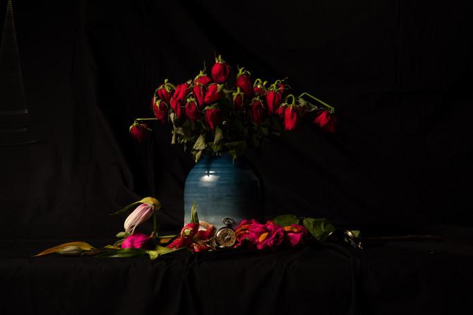 Dead Roses 2