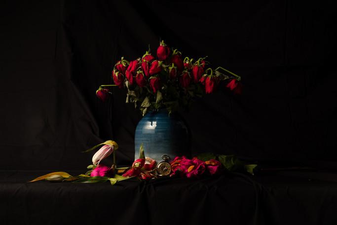 Dead Roses 1