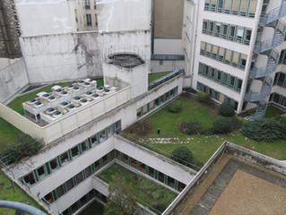 APPEL A CANDIDATURE // Paris 11e / 10 mois - 13,75€/m²/mois