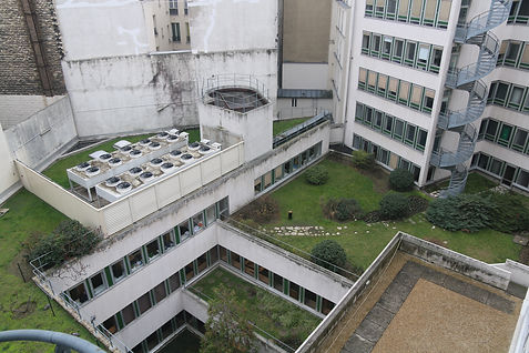 Nation vue sur jardin et terrasse.JPG
