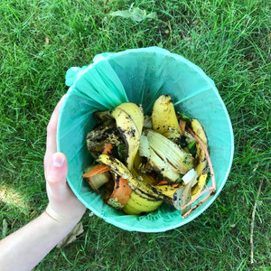 Composting. Why Is It Important?