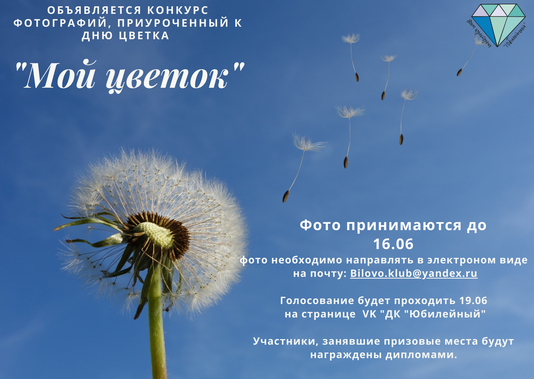 "Конкурс фотографий ""Мой цветок"""