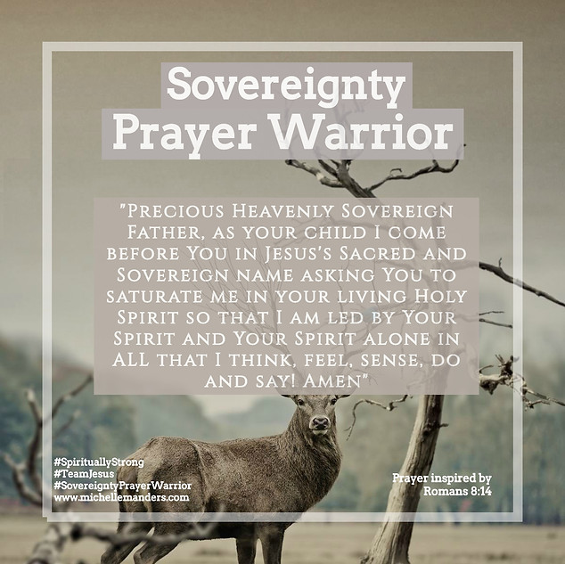 Prayer for God's Sovereign Holy Spirit to Guide you.