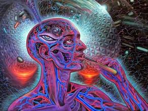 Plant Medicine & Psychedelics - Demonic Gateways