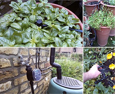 irrigate2 for wix.jpg