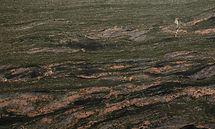 Verde Marisma LEATHERED 3cm Granite 7237