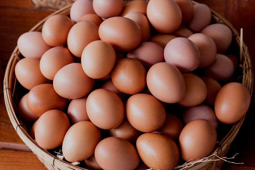 eggs-basket_edited.jpg