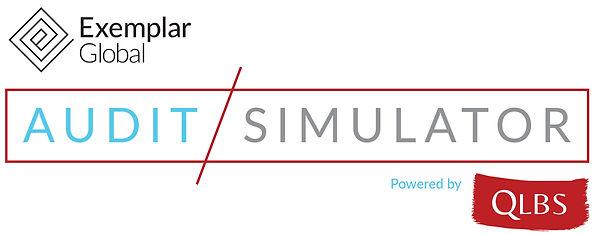 EG-Audit-Simulator-by-QLBS-logo.jpg
