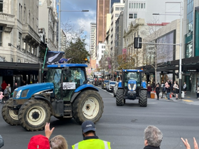 Why did New Zealand Farmers Drive their Tractors into the Cities?
