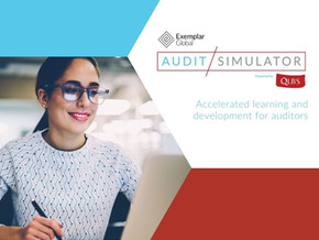 Get Free Auditing Experience