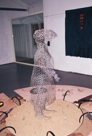 תערוכה בשינג'ו, טייוואן, 2005 Unbound Feet