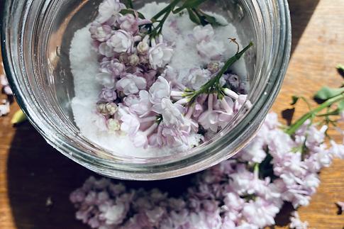lilac.heic