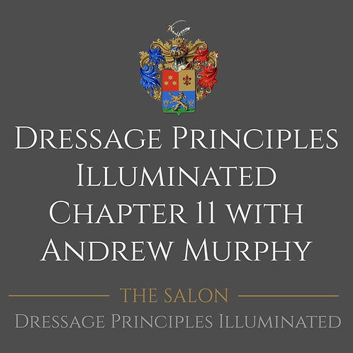 Dressage Principles Illuminated Chapter 11 with Andrew Murphy