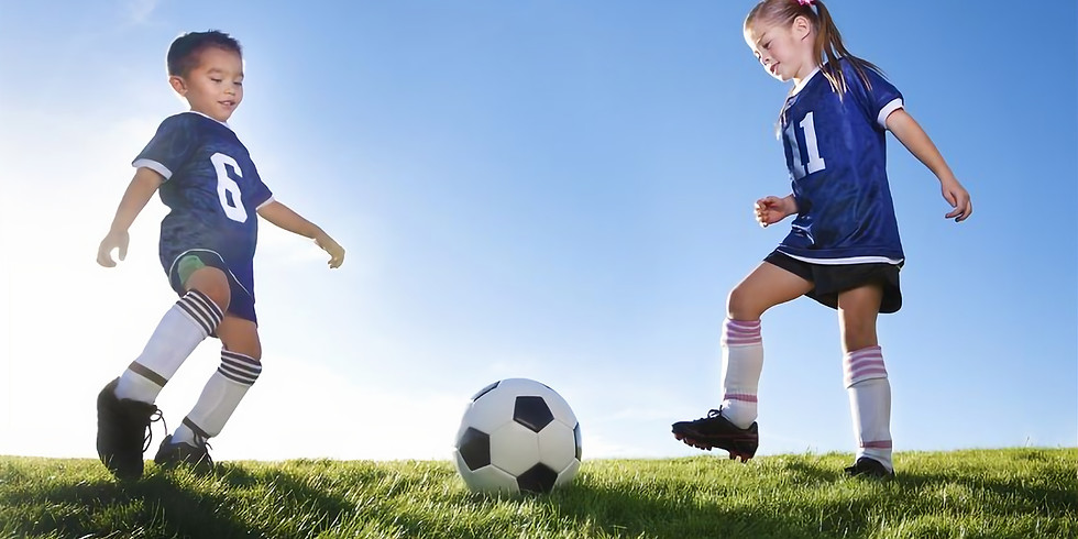Introduction to Long Term Development in Sport and Physical Activity