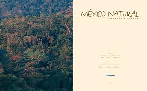 2002_México_Natural.png