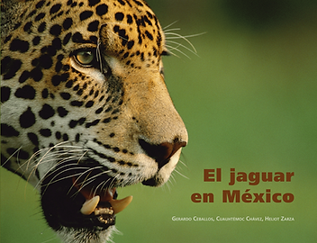 2011-folleto-jaguar PORTADA_1-1-1.png