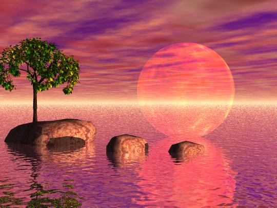 """Rose Moon"""