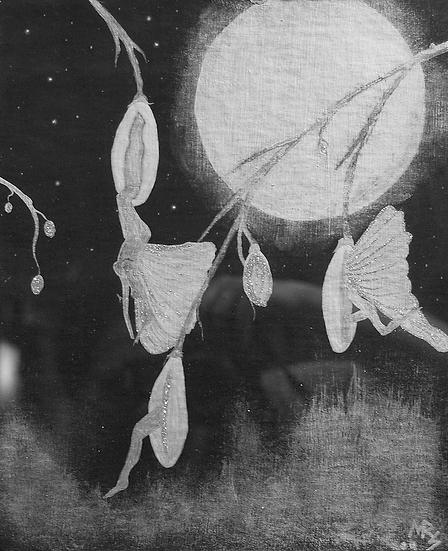 """Moonlight Emergence"""
