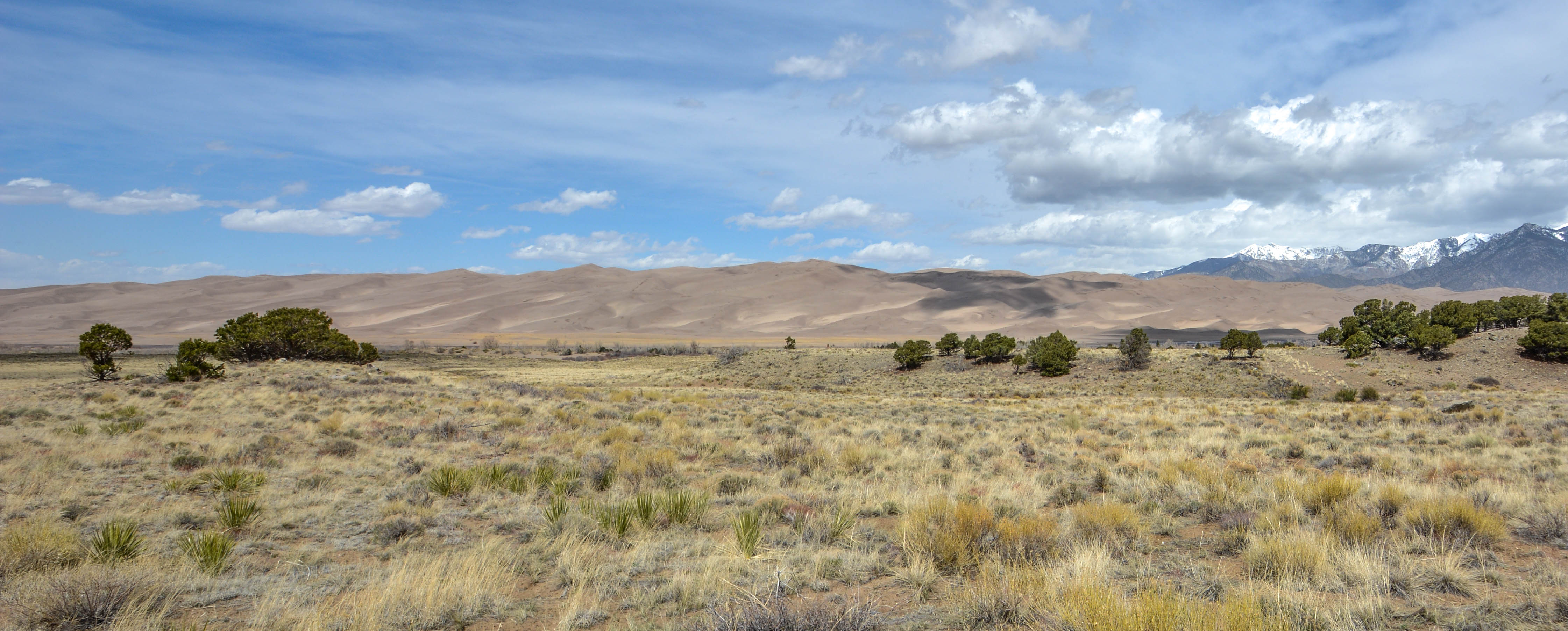 The Great Sand Dunes and Mount Herard 1