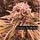 Thumbnail: Papaya Punch (easy-inter)