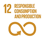 responsible consumption.png