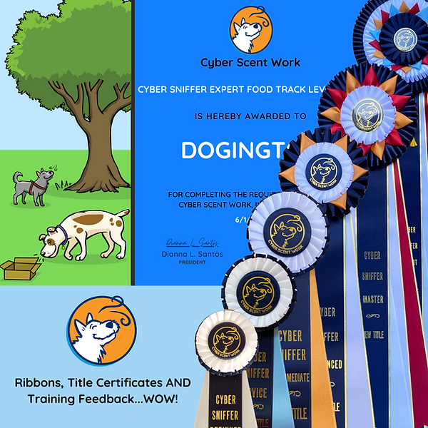 Ribbons Titles and Training.png