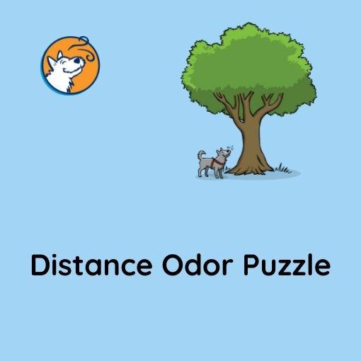 Distance Odor Puzzle
