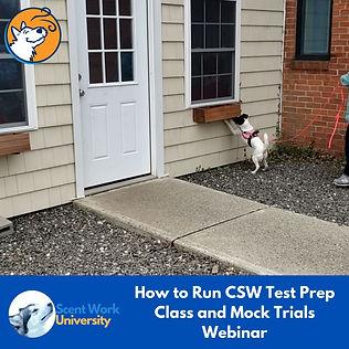 CSW Webinar Running CSW Test Prep Classes.jpg