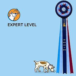 Expert Level