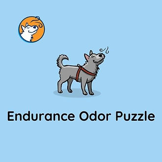 Endurance Odor Puzzle
