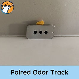 Paired Odor Track