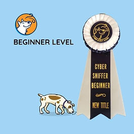 Beginner Level