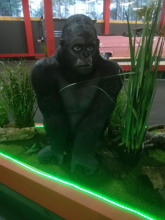 Gorilla Life SIze.jpg
