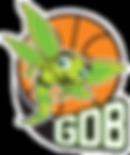 LogoGDB-BordBlancSansFond.png