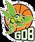 Ganshoren Dames Basket GDB
