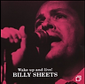 BILLY SHEETS 02000.png
