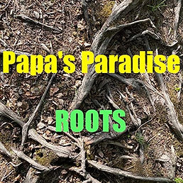 Cover Papa's Paradise - Roots.jpg