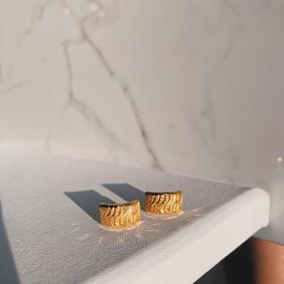 916 Curved Earrings