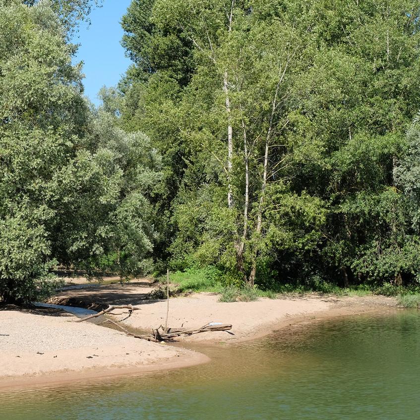 Petite plage secrète sur la rive !