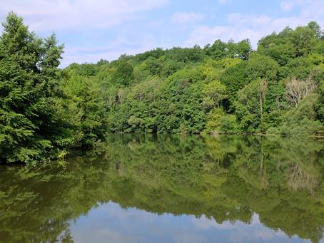 De Conflandey à Scey-sur-Saône