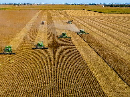 A agroindústria