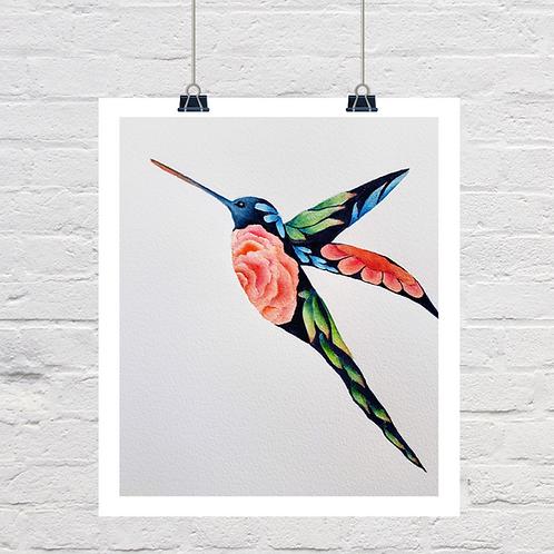 Floral Hummingbird 2nd