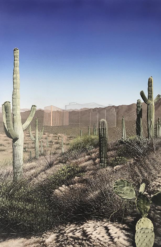 Saguaro, AZ