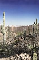 Nexus--SaguaroAZLow.jpg